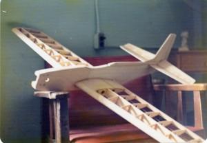 Mustang-Stunter-Fall-73-1