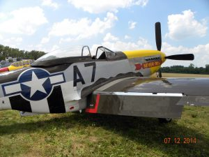 P-51 Mustang 'NEVER Miss'