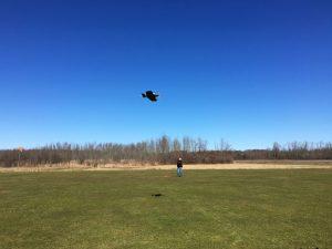Steves' 'Ryan Flyer' in flight